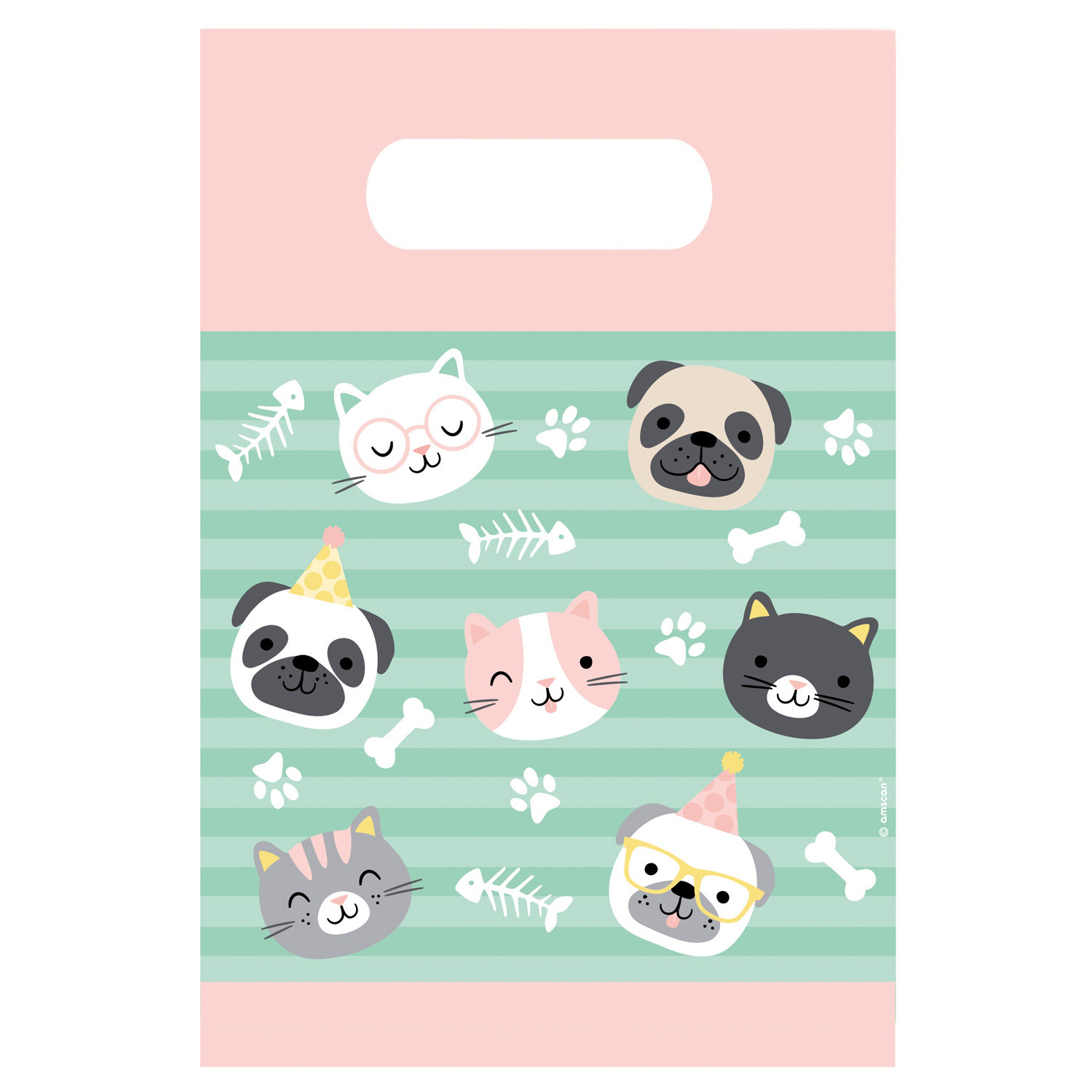PB:Hello Pets Party Bags 8